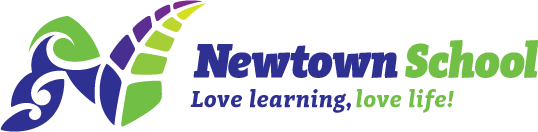 Newtown School